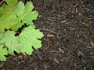 Environmental Hardwood Mulch